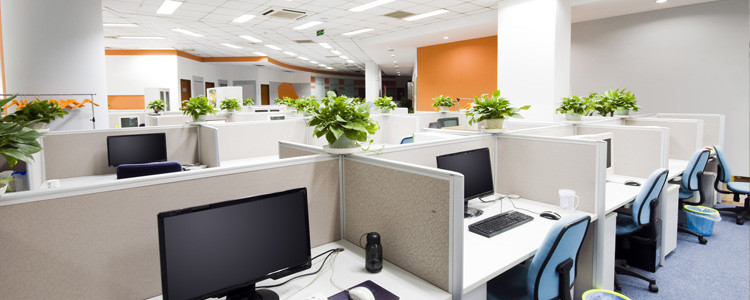Comfortable Office Environment